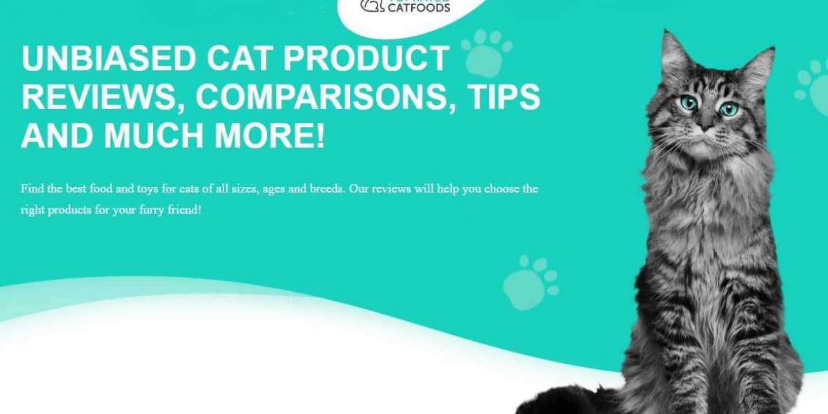 The best diet for your cat
