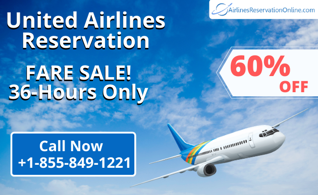 Easy Way to Find Cheap Flight Reservations to the USA in 2021 | Call Now