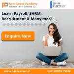 paceseo services
